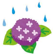 梅雨のイラスト「紫陽花と雨」   かわいいフリー素材集 いらすとや